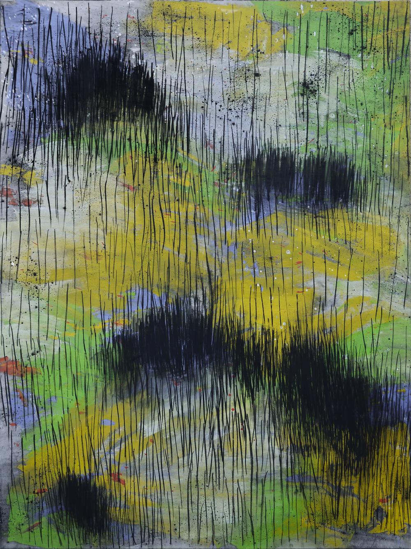 2011 - Paysages, noir brûlé / Black burnt landscape n°7