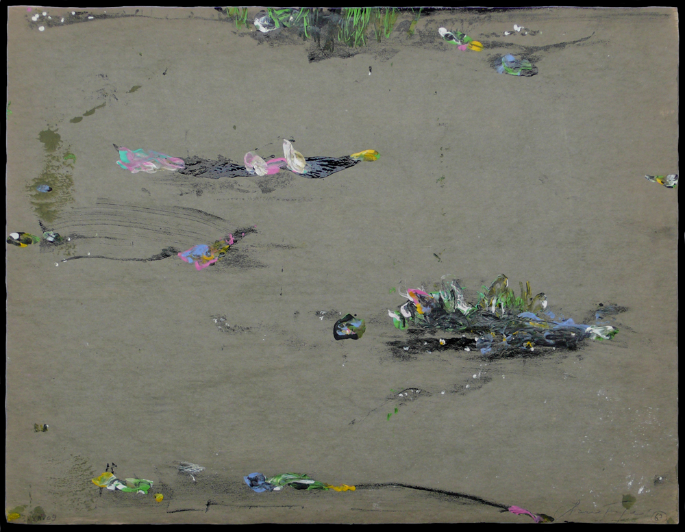 2010 -  L'esprit de la rivière  /  River spirit n°67